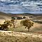 Sedan Hill - Sedan, Murraylands, South Australia by Mark Richards