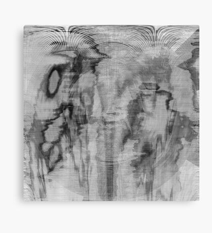 Symphony in Black and White Canvas Print