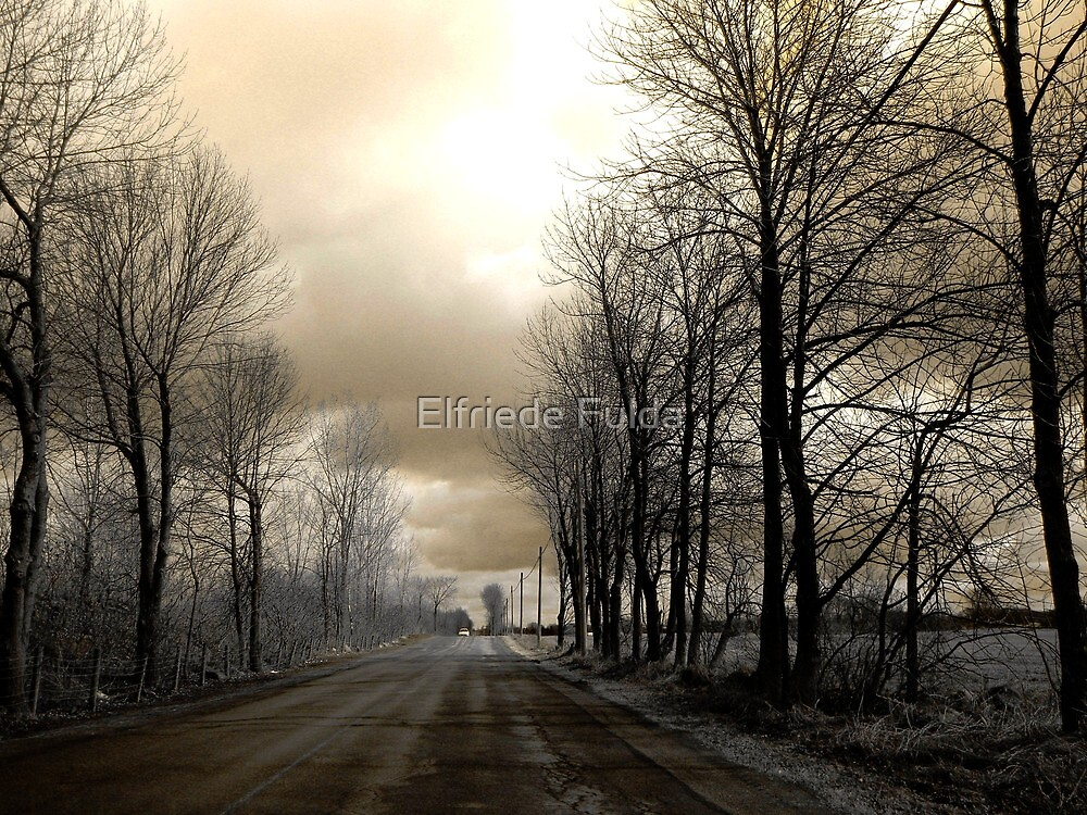 The Road ! by Elfriede Fulda
