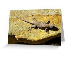 Sunning Fence Lizard Greeting Card