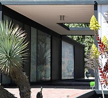 Case Study House 21, Pierre Koenig, Modern Architect by Jane McDougall