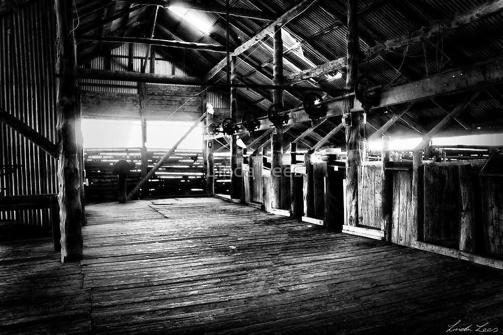 Mungo Shearing Shed interior 2 by Linda Lees