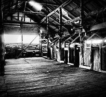 Mungo Shearing Shed interior 2 by Linda Lees