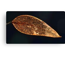 """ Gum Leaf Abstract "" Canvas Print"