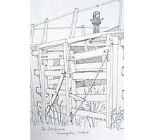 Old sale and stockyard, Kensington. Pen sketch. 1994Ⓒ Photographic Print