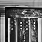 Shadowing Mackintosh by David Alexander Elder