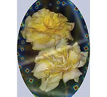 Yellow roses emblem  Photographic Print