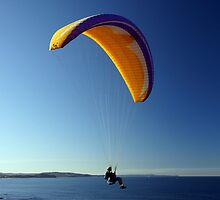 Paraglider by Ross Campbell