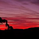 Skies On Fire by TonyCrehan