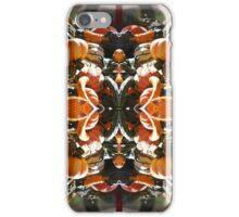 Corn 'n' squash 'n' gourds 'n' punkins - In the Mirror iPhone Case/Skin