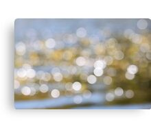 Focal Points Canvas Print