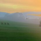 Sunburnt Country - 2 by Neophytos
