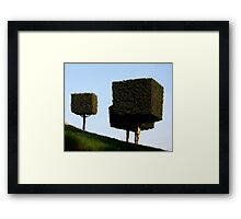 Disney Topiary 'Square Trees' Framed Print