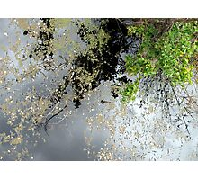 The Up Side of Down #2 Photographic Print