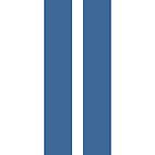 Racing Stripes by samsphotos12