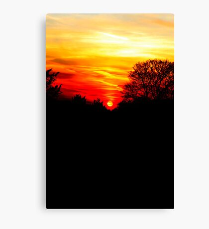 Red sunset vertical Canvas Print
