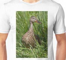 Mallard Duck hen Unisex T-Shirt