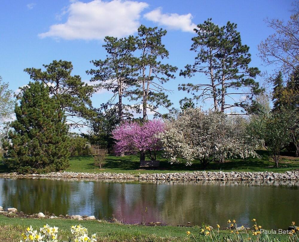 Spring Garden in Missouri by Paula Betz