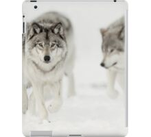 Timber Wolf Pack iPad Case/Skin