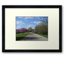 Country Road in the Spring Framed Print