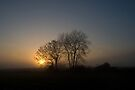 Misty Sunset by Nigel Bangert