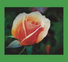 Peach rosebud One Piece - Short Sleeve