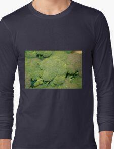 Broccoli Bag Long Sleeve T-Shirt