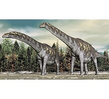 Argentinosaurus Photographic Print