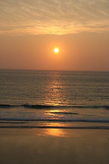 Evening Sun by Barry Hobbs