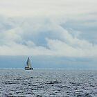 Sailing Horizon by Barry Hobbs