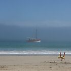 Boat in Mist by Barry Hobbs