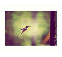 my little bird Art Print