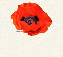 In Flanders Fields the Poppies Blow Pullover