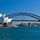 Postcard Sydney by Liz Percival