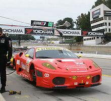 #62 American Le Mans Series, Petit Le Mans at Road Atlanta by DanaSchultz