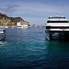Catalina Express & Avalon Casino by Celeste Mookherjee