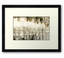 Soft......... Framed Print