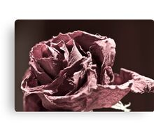 Faded (er - Desaturated) Rose Canvas Print