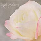 Yellow Rose by photecstasy