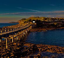 LA PEROUSE by normanorly
