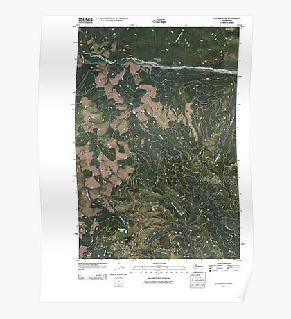 USGS Topo Map Washington State WA Elk Mountain 20110405 TM Poster