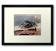 Boris the Spider or Arachnid Framed Print