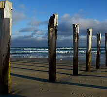 Old Jetty Beams, St Clair Beach, Dunedin, 4 by DeliaA