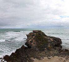 Limestone Coast by Emma Holmes