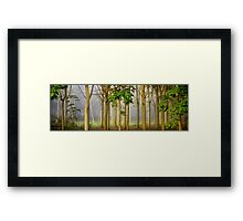 The Hundred Acre Wood (apologies to Winnie the Pooh) Framed Print