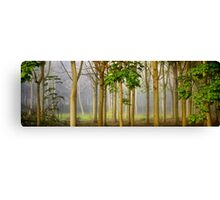 The Hundred Acre Wood (apologies to Winnie the Pooh) Canvas Print