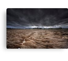 Storm Field Canvas Print