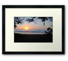 Sunrise through the trees - Apollo Bay, Victoria Framed Print