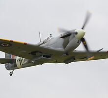 Supermarine Spitfire MKV by Nigel Bangert
