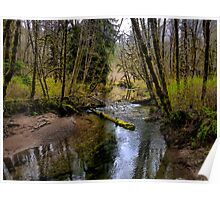 Just A Peek Of Spring ~ Whittaker Creek ~ Poster